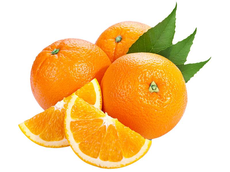 Baladi-Orange.jpg