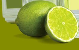 paramount_citrus_limes_large.png